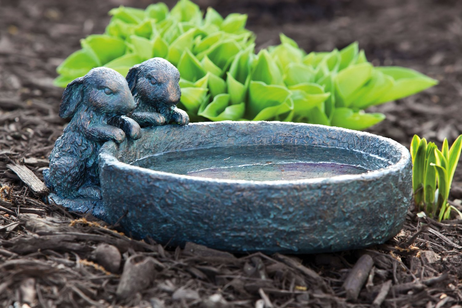 Bird Baths and Bird Accessories