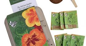 Starter Seed Packs for Your Fairy Garden & Other Specialty Gardens